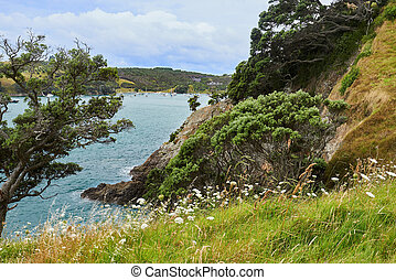 Beautiful scenery in Waiheke Island of vegetation, the sea , sky and clouds