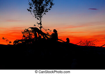 beautiful scenery of setting sun with dark silhouettes of man and child sitting on tree branches.