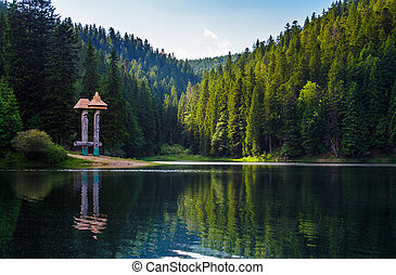 beautiful scenery of Synevyr lake. spruce forest in evening...