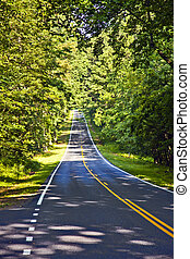 Beautiful scenic country road curves through Shenandoah...