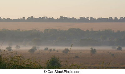 Beautiful scenic landscape of fog over the village plain -...