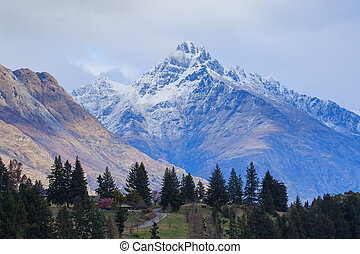 beautiful scenic of queen town south island new zeraland