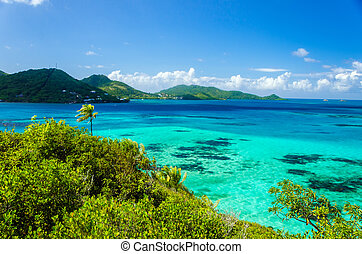 Beautiful Sea and Tropical Island - Turquoise Caribbean...