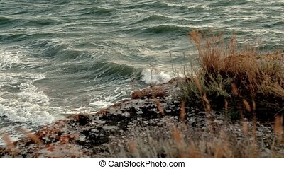 Beautiful sea landscape with rocky coast and dry grass