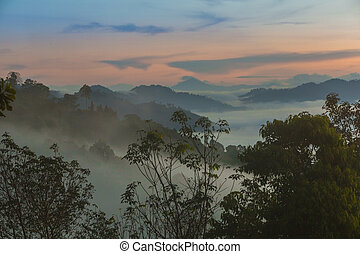 Beautiful sea mist the scene of nature in the morning of southern Thailand at Khao Khai Nui, Thailand