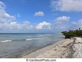 Beautiful seascape on the coast of aruba