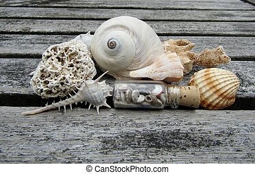 Beautiful seashells, beachworn coral pieces and small glass bottle on wooden background