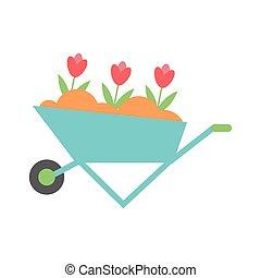 beautiful seeded garden flowers in wheelbarrow
