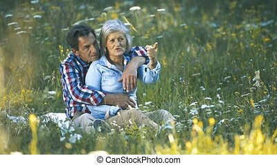 Beautiful senior couple sitting on summer meadow.