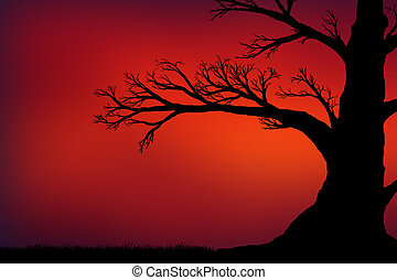 silhouette of a big black tree against the red sky
