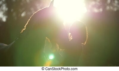 Beautiful silhouette of a girl and a horse on a walk in the...