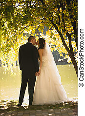 silhouette photo of bride and groom kissing at river under big t