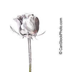 Beautiful silver rose