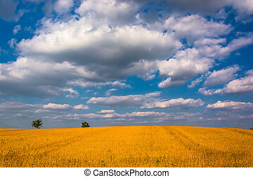 Beautiful sky over farm fields in rural York County, Pennsylvania.