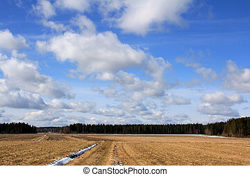 Beautiful sky over spring fields