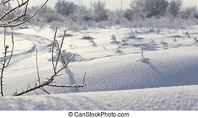 Beautiful snow-covered land, frost on the branches
