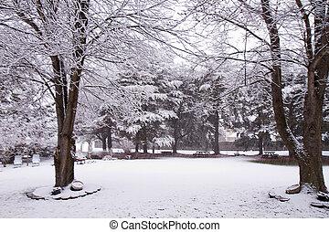 Beautiful Snow Storm