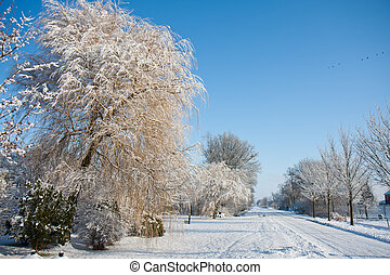 Beautiful snowy winter landscape of the netherlands