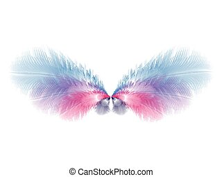 Beautiful soft wings