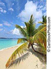 Beautiful Solomon Bay (USVI) - A sunny day at Solomon Bay in...