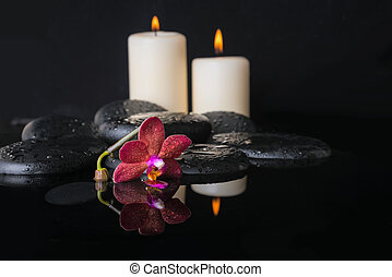 Beautiful spa concept  of deep purple orchid (phalaenopsis) and