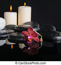 Beautiful spa concept of zen stones with drops, purple orchid (p
