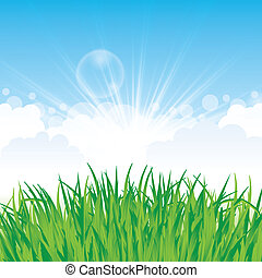 Beautiful spring background with grass and clouds