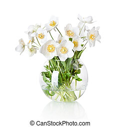beautiful spring flowers jasmine in vase isolated on white