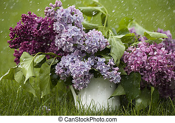 Beautiful spring flowers. purple lilac in white vase on grass green background