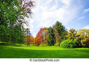 Beautiful spring forest with trees of all colors and brand...