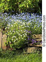 Beautiful spring garden, beauty in nature.