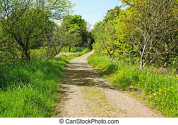 Beautiful spring road in the park