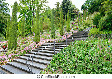 beautiful staircase in a beautiful park