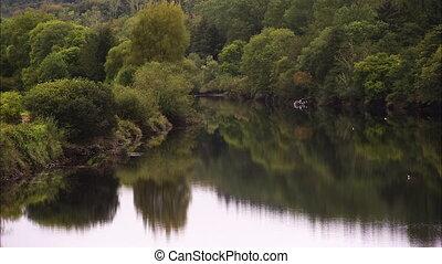 Beautiful still shot of a rivers reflection, mirroring its green trees and bush.