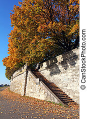 beautiful stone stairs in autumn