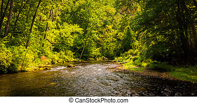 Beautiful stream scene along Gunpowder Falls in Baltimore County, Maryland.