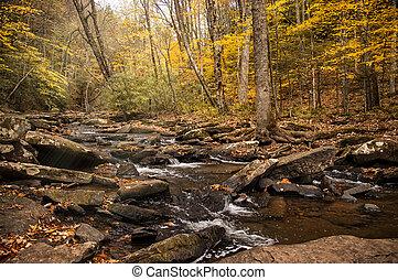 Beautiful Streaml In Autumn