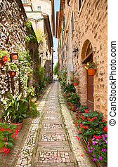 Beautiful street in Spello. Italy