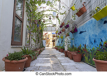 Beautiful street with decorative plants and flowers on the wall of a house, Bodrum, Turkey.