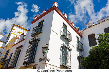 beautiful streets full of typical color of the Andalusian city o
