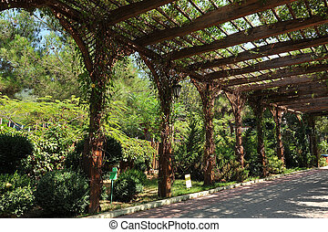 Beautiful structure, awning, made of wooden boards. Alley of wooden boards for climbing plants