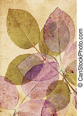 Beautiful vintage background with subtle, rose autumnal leaves