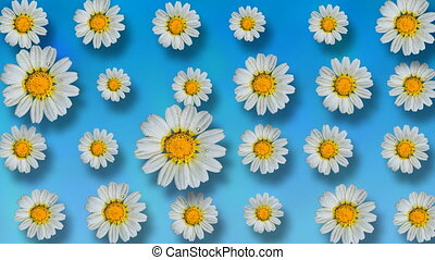 Beautiful summer animated floral background - Floral pattern...