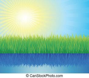 Beautiful summer background vector