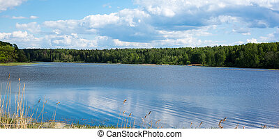 Blue sky with white clouds. Forest on the banks of the river.