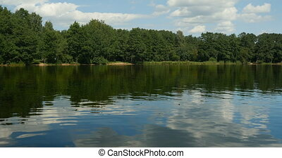 forest and clouds reflected in the waters
