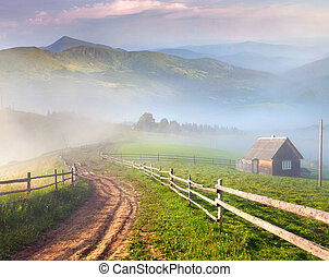 Beautiful summer landscape in a mountain village. Foggy...