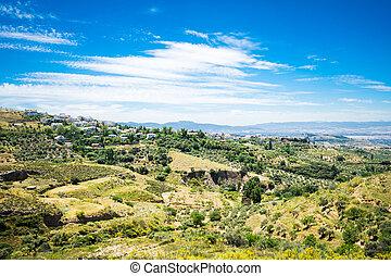 Beautiful summer landscape in Granada, Spain