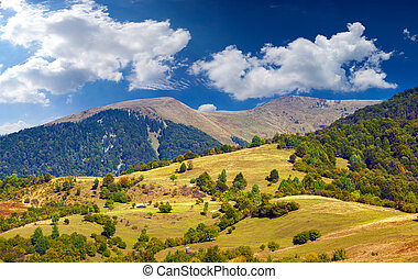Beautiful summer landscape in the Carpathian mountains.