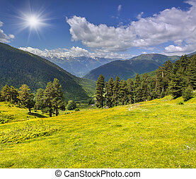 Beautiful summer landscape in the Caucasus mountains